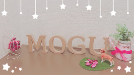 Salon do Moguのイメージ